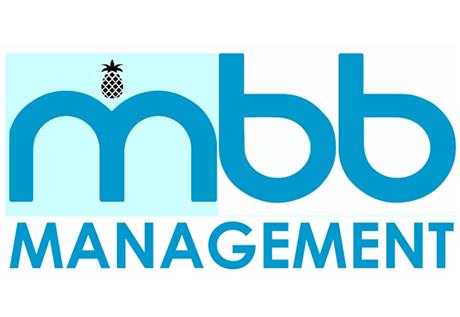 Mbb Management Website Design
